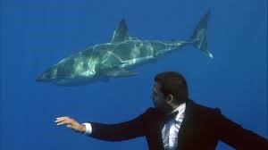 David Blaine swimming with sharks